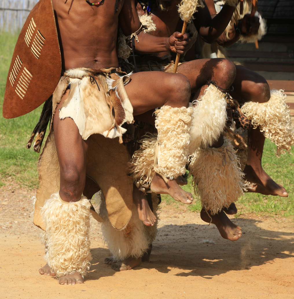 Zulu warriors in South Africa perform their ritual battle dance before going to fight.